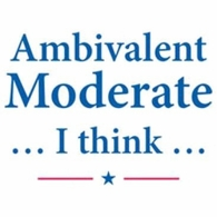 Ambivalent Moderate I Think Tee