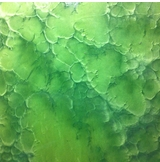 Green Glass Basecoat with Green Glass Effects Metallic Epoxy