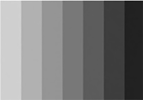 Black Charcoal Gray Color Palette