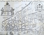 A Plan of the City of New York from an Actual Survey - Iames Lyne
