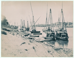 Fishing Boats by the Shore