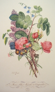 No. 7 Roses, Lilas, Auricules et Campanules