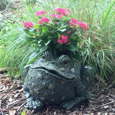 Large Toad Planter - Natural Green - Click to enlarge