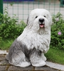 "18"" Old English Sheepdog ""Ultra-Realistic"""