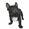 "20"" French Bulldog Statue ""Ultra-Realistic"""