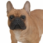"20"" Large French Bulldog ""Ultra-Realistic"""