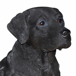 "21"" Black Lab Statue ""Ultra-Realistic"""