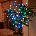 AC Powered LED Bush - Color Changing