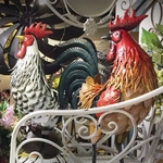 Iron Roosters (Set of 6)