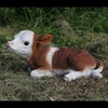 Baby Cow Calf - Brown/White