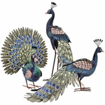 Beautiful Peacock Birds (Set of 3)