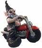 Biker Gnome on Red Bike