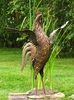"52"" Large Metal Rooster - Antique Brown"