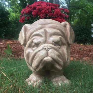 Muggly Bulldog Planter - Stone Wash Finish - Click to enlarge