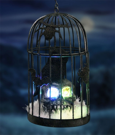 Caged Owl on Skull w/Color Changing LED & Timer - Click to enlarge