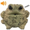 Croaking Toad w/Motion Sensor - Light Natural