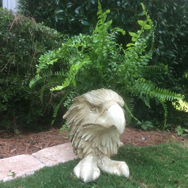 Eagle Mascot Planter - Antique Finish - Click to enlarge