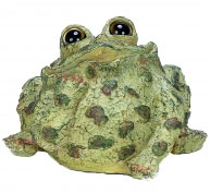 Extra Large Dreamer Toad - Light Natural - Click to enlarge