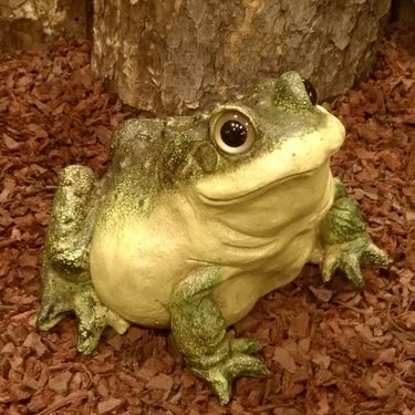 Garden Toad Statue - Click to enlarge