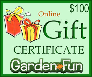 Gift Certificate $100 - Click to enlarge