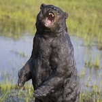 "Fierce Bear Statue ""Ultra-Realistic"""