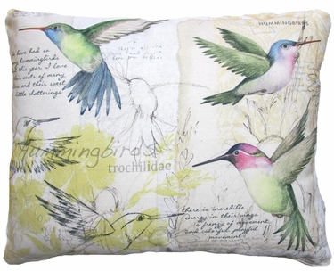 Hummingbird Study Outdoor Pillow - Click to enlarge