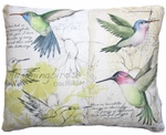 Hummingbird Study Outdoor Pillow