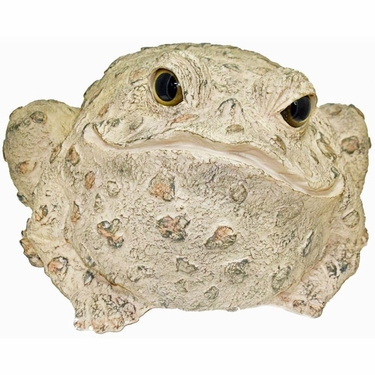 Jumbo Toad Statue - Light Natural - Click to enlarge