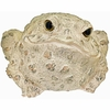 Jumbo Toad Statue - Light Natural