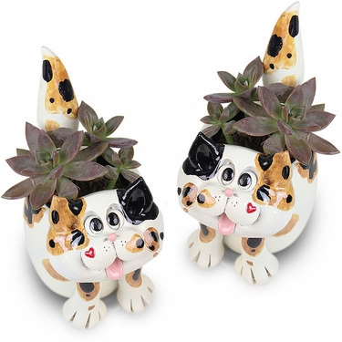Kitten Planters (Set of 2) - Click to enlarge