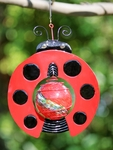Ladybug Design Art Glow Catcher