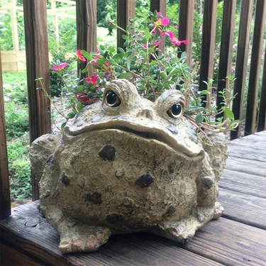 Large Toad Planter - Natural Brown - Click to enlarge