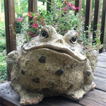 Large Toad Planter - Natural Brown