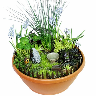 Miniature Garden Gnome Kit - Click to enlarge