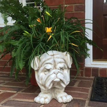 Muggly Bulldog Planter - Antique Finish - Click to enlarge