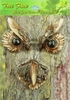 Owl Tree Art