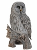 "Perched Grey Owl ""Ultra-Realistic"""