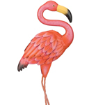 Pink Flamingo Decor Sm