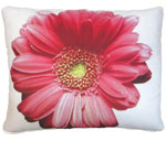 Pink Gerbera Outdoor Pillow