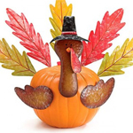 Pumpkin Kit - Turkey Decor