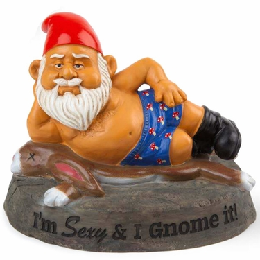 Sexy Gnome - Click to enlarge