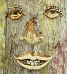 Sleepy Tree Face