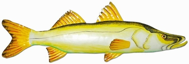 Snook Fish Wall Decor - Click to enlarge