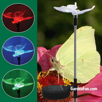 Solar Butterfly Light Garden Stake - Click to enlarge