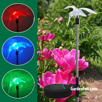 Solar Hummingbird Garden Stake - Click to enlarge