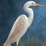 Standing Art Egret Bird