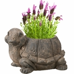 Timeless Turtle Planter