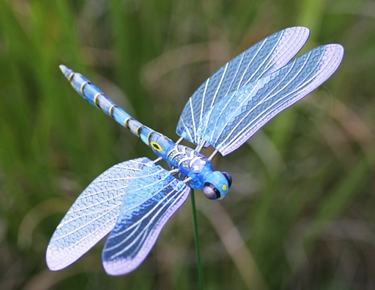 Windy Wings Dragonfly Garden Stakes (Set of 6) - Click to enlarge