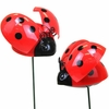 Windy Wings Ladybug Garden Stakes (Set of 6)