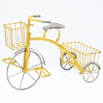 Youthful Tricycle Planter - Yellow